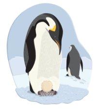 JRiggs_DKBabyAnimals_penguins