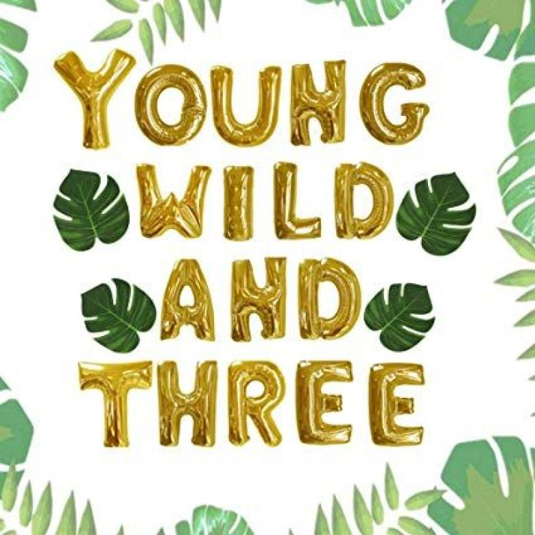 best toddler birthday party themes young wild and three
