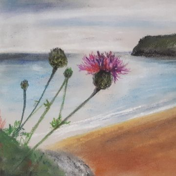 Barafundle Beach,Pembrokeshire