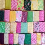 More Quilts Disliked By Joshua Jelly Roll Races Again Jennifer Beckstrand