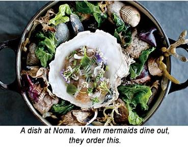 Noma Oyster