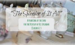 The Splendor of It All