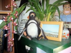 My felted penguin turned out to be hardly bigger than a picture frame!