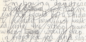 Later I must have found the idea of daydreaming about Steve asking me out so supremely embarassing that I felt the need to scribble the entire section out.  Luckily for us, it was still legible.