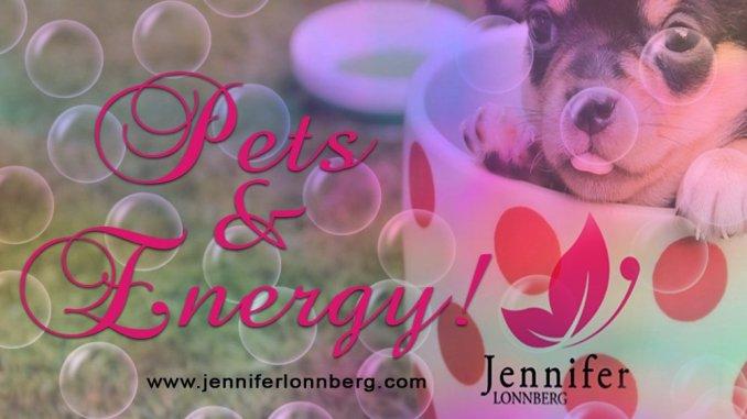 Pets and Energy - Jennifer Lonnberg Spiritual Healer Psychic & Mentor