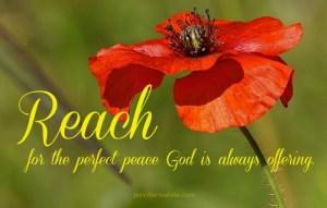 reach for peace