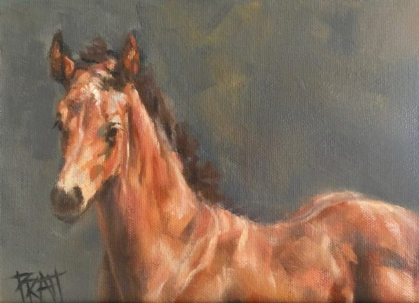 sporthorse, equine art, oil painting, horse art, Jennifer Pratt