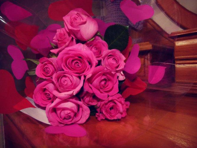 hot lips rose flowers ©www.jenniferramirezbaulch.com