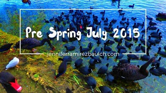 pre-spring-july-2015_pe