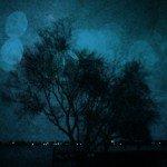 Deep Winter June Ballarat City 2015