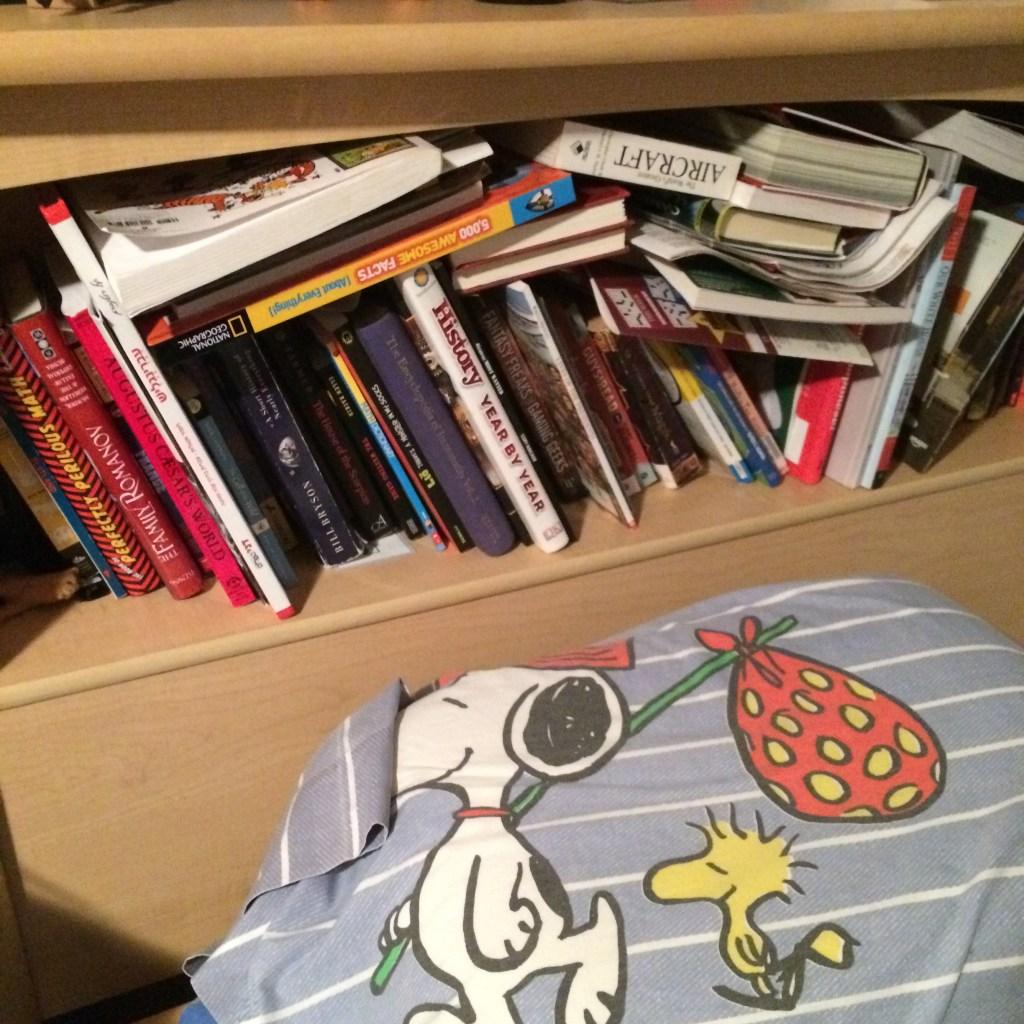 books crammed everywhere