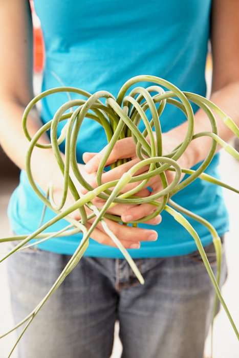 Peterborough Market Photography - Garlic Scapes