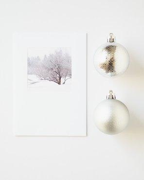 Winter Tree Holiday Cards - Tangled Winter Web
