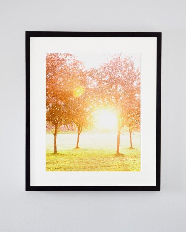 Morning Kisses - Spring Sunrise Photography Print