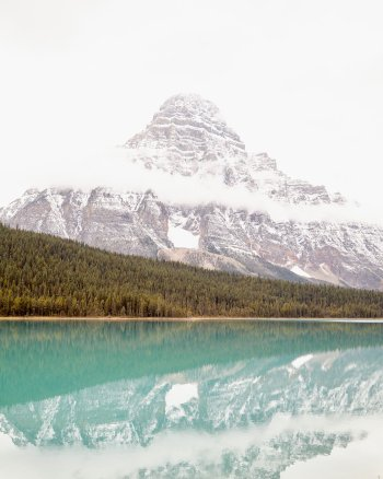 Ever Green, Ever More - Vertical Mountain Photography Print