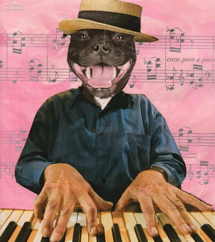Dog pianist. Magazine collage on painted music page background.