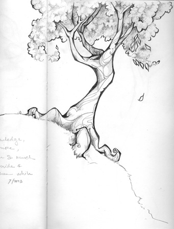 Tree sketch | jenn mcmenemy