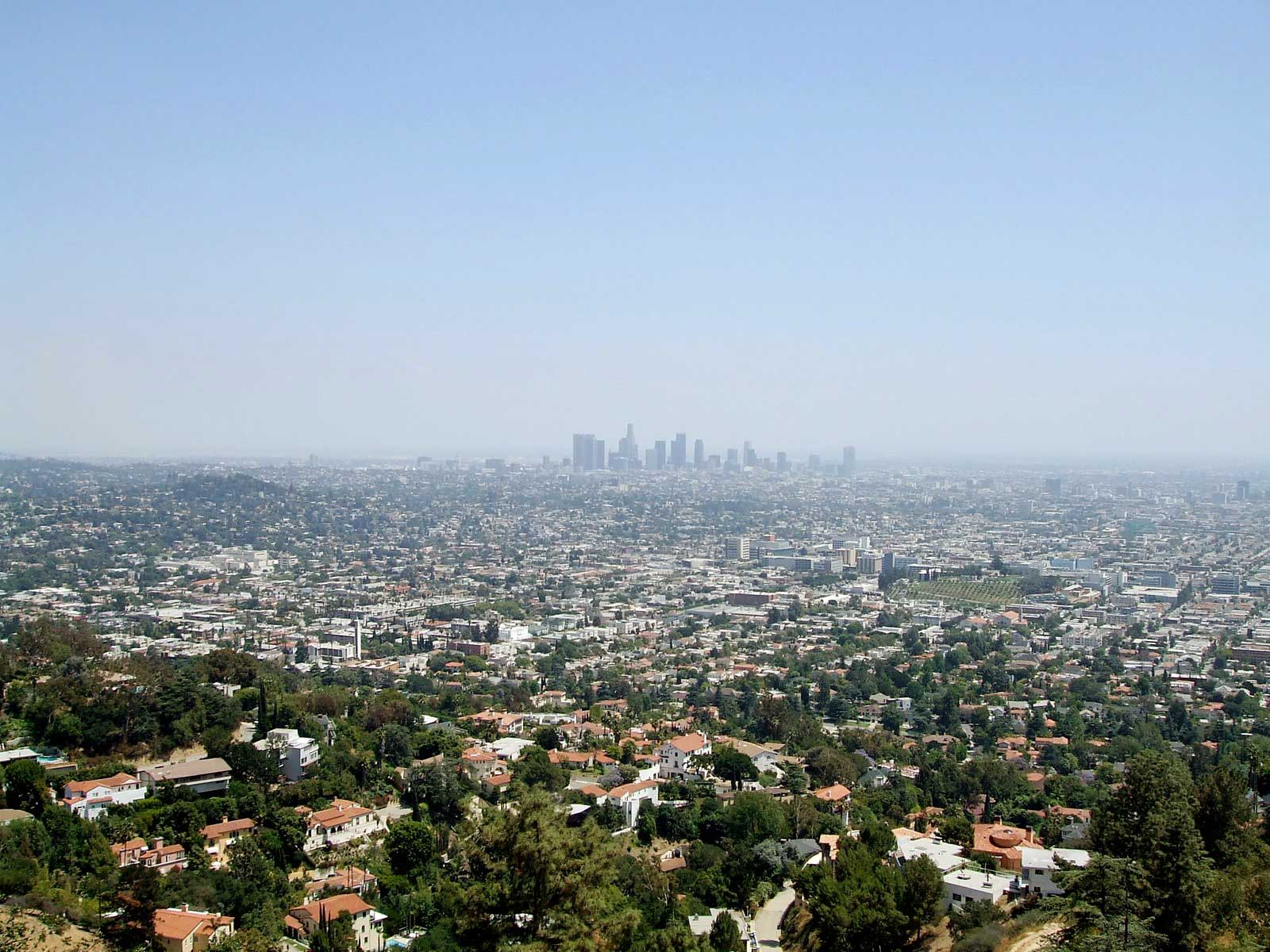 Los Angeles, Portland, and the Shape of Life