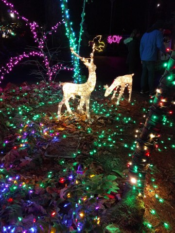 Holiday lights at the Grotto!