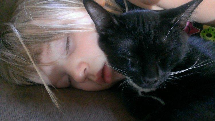 cat sleeping with kids
