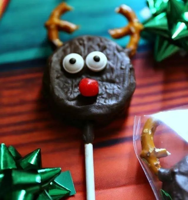 fun homemade animal christmas cookie