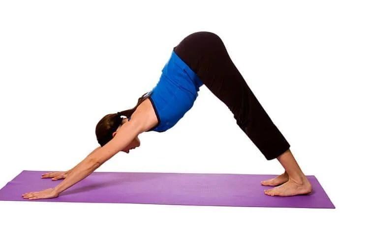 downward dog yoga pose