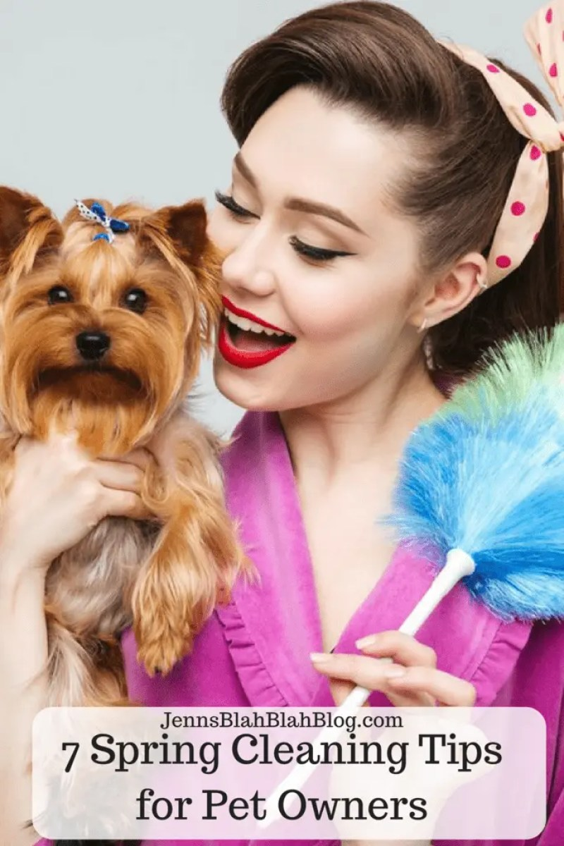 7 Spring Cleaning Tips for Pet Owners
