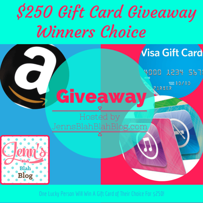 $250 Gift Card Winners Choice Giveaway!