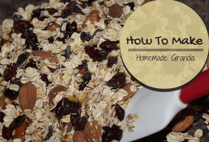homemade granola recipes jenns blah blah blog