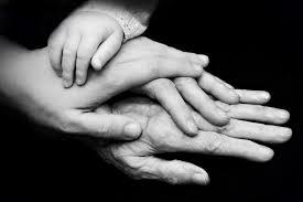 parent generations [1166589]
