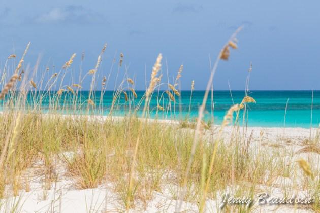 beaches-6