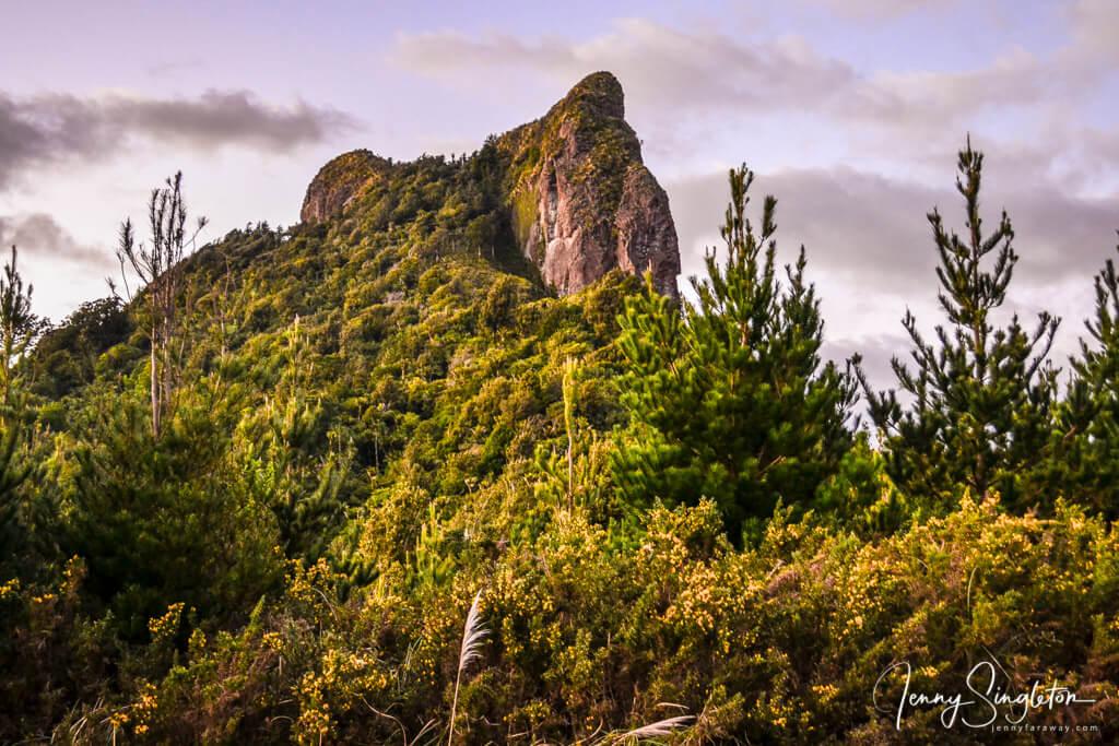 Rock formations at Castle Rock track, Coromandel, New Zealand
