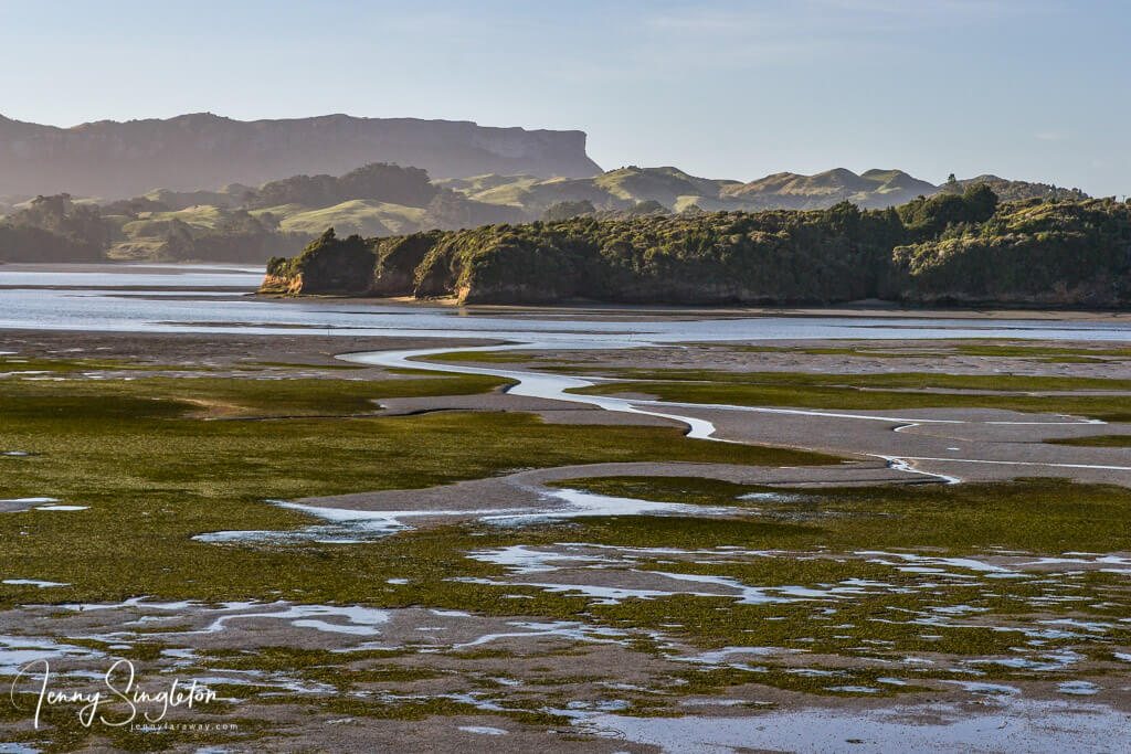 Whanganui Inlet at low tide, showing its seaweed and deeper channels trailing through the mud flats.
