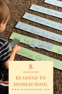 8 Reasons to Homeschool