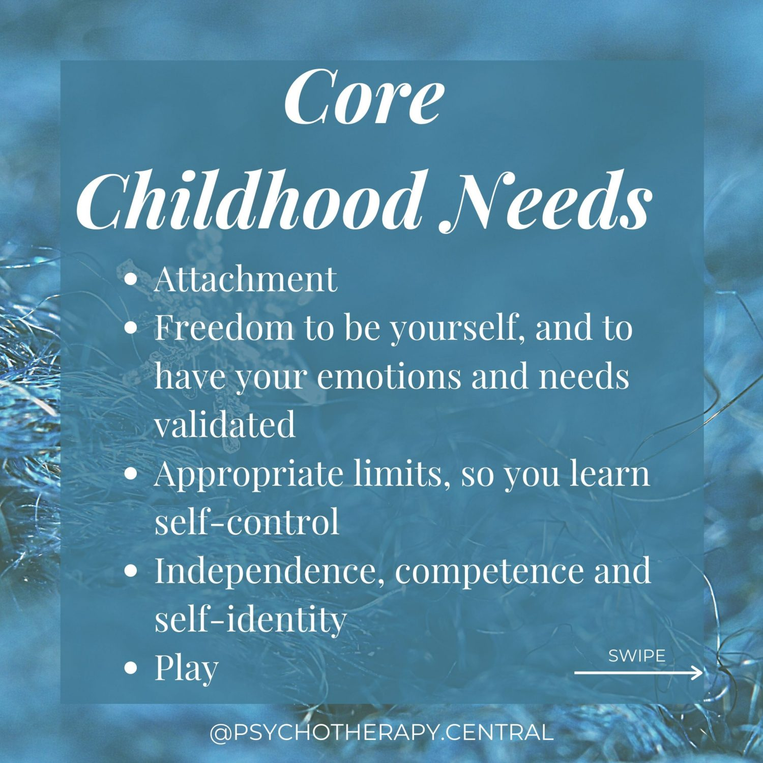What are Core Childhood Needs