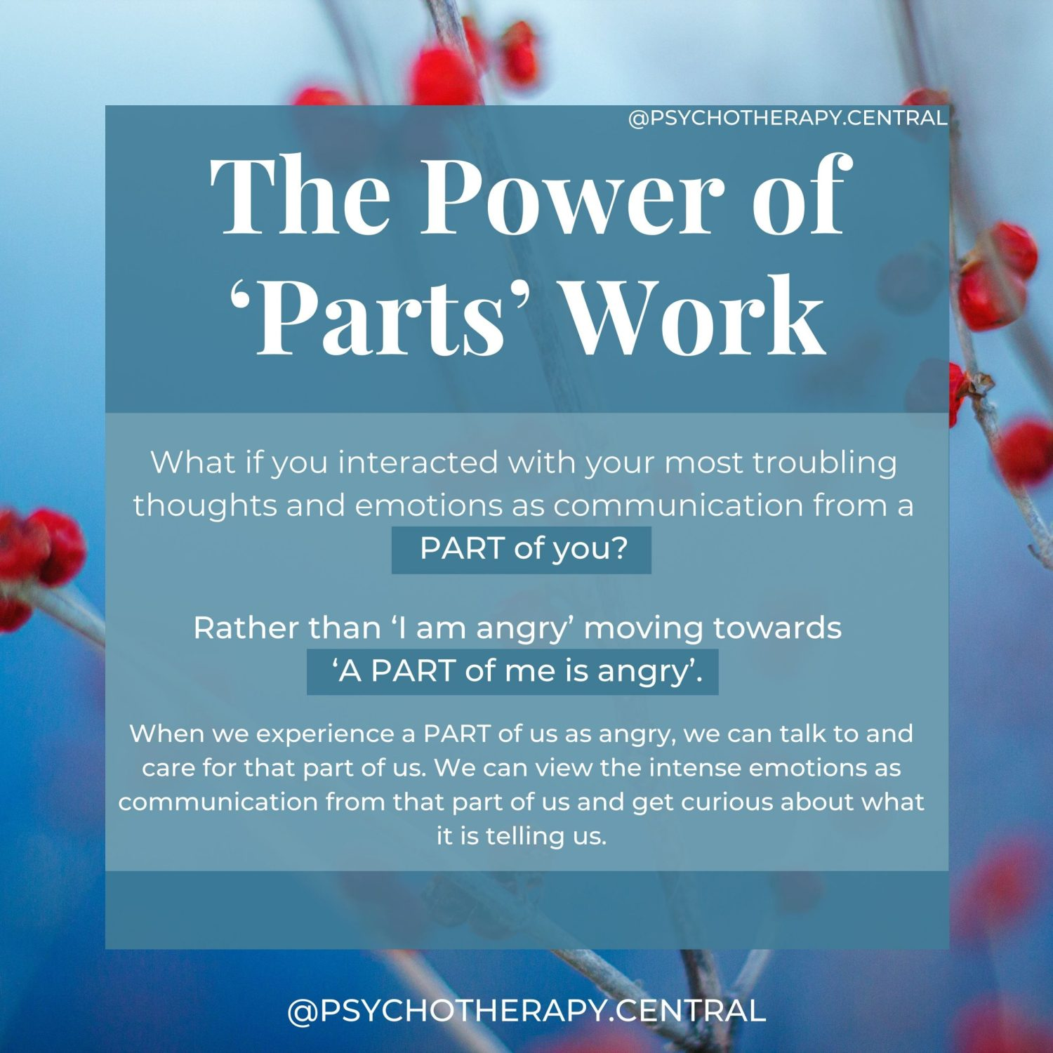 The Power of 'Parts' Work