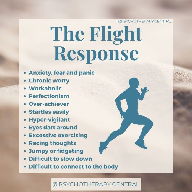 The Flight Response Anxiety, fear and panic Chronic worry Workaholic Perfectionism Over-achiever Startles easily Hyper-vigilant Eyes dart around Excessive exercising Racing thoughts Jumpy or fidgeting Difficult to slow down Difficult to connect to the body