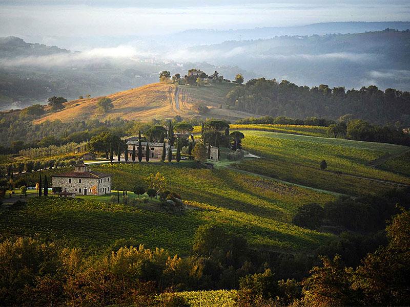 unieke wijnreizen Italië wijnkelder Umbrië