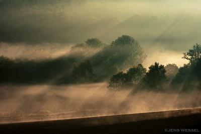 Morgendliche Sonnenstrahlen