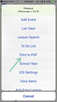 choose print to PDF from options