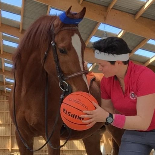 amélioration condition physique cheval