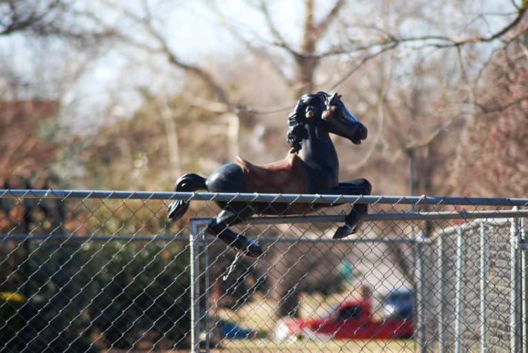 horsey on a fence