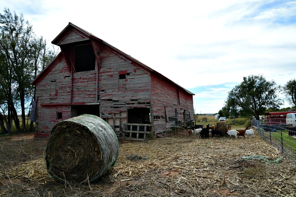 Weather Barn on the road to Jones