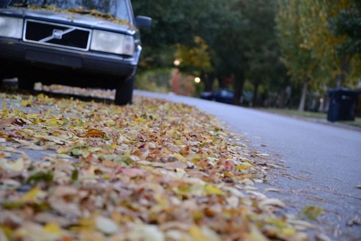 1989 Volvo in Autumn