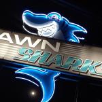 Fun Neon, Pawn Shark | OKCsign