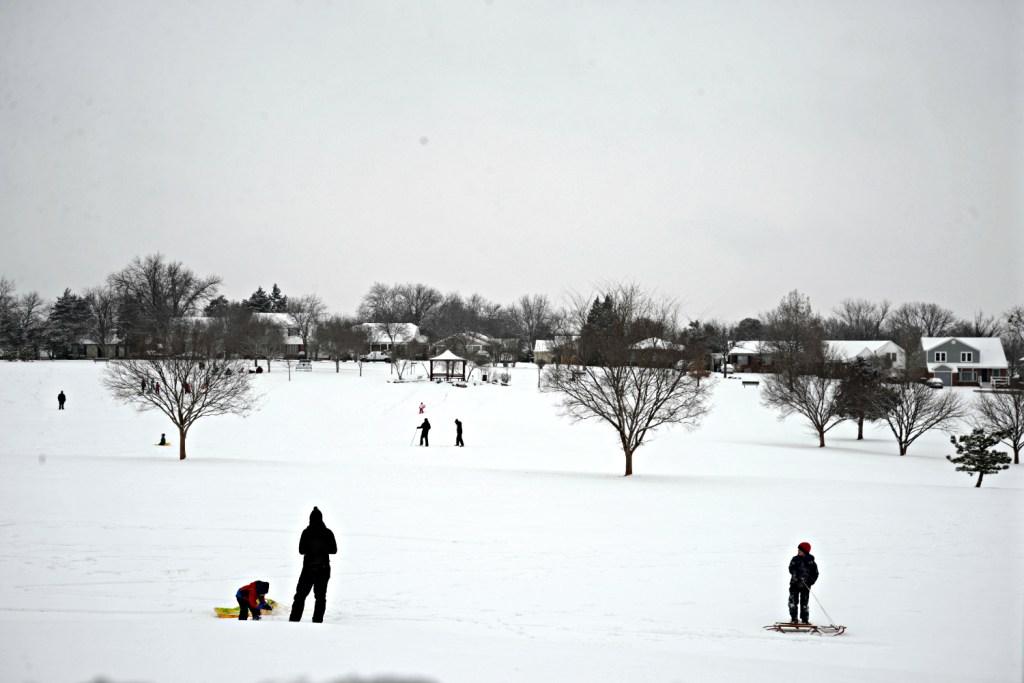 Snow Sledding Public Park