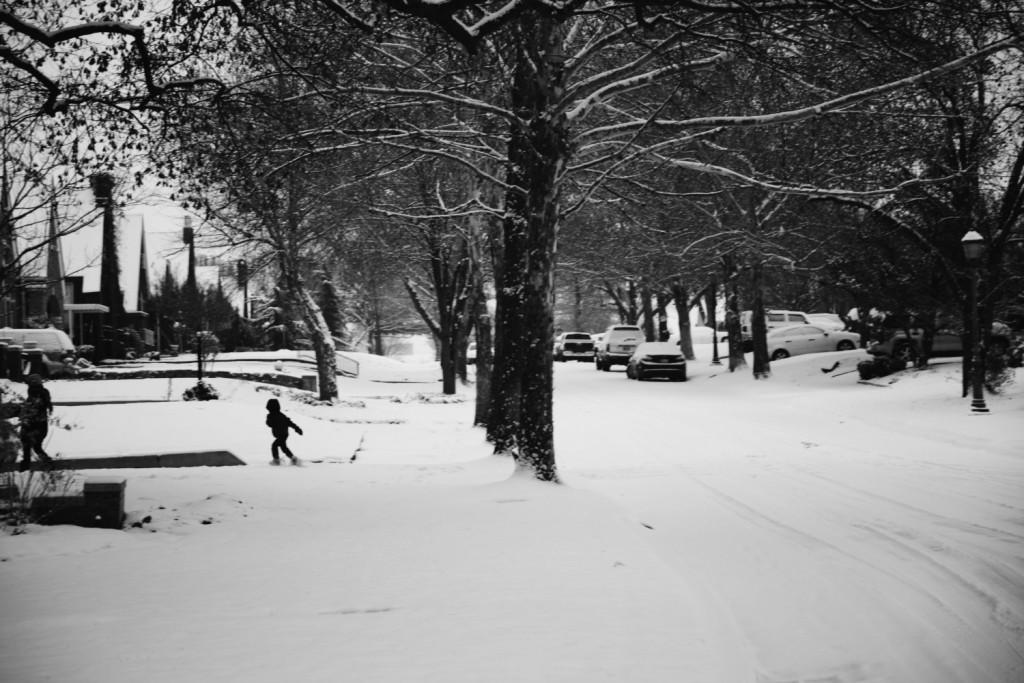 Snowy Street Trees Cars