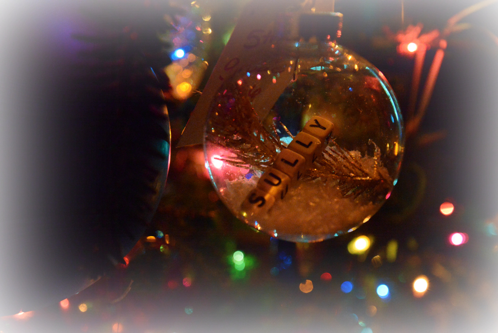 Clean Glass Ornament with name cubes