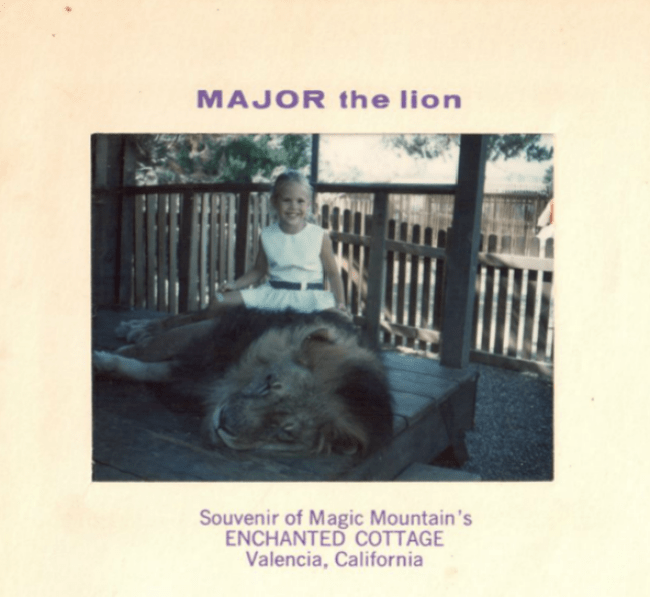 Major the Lion inside Magic Mountain's nchanted Cottage