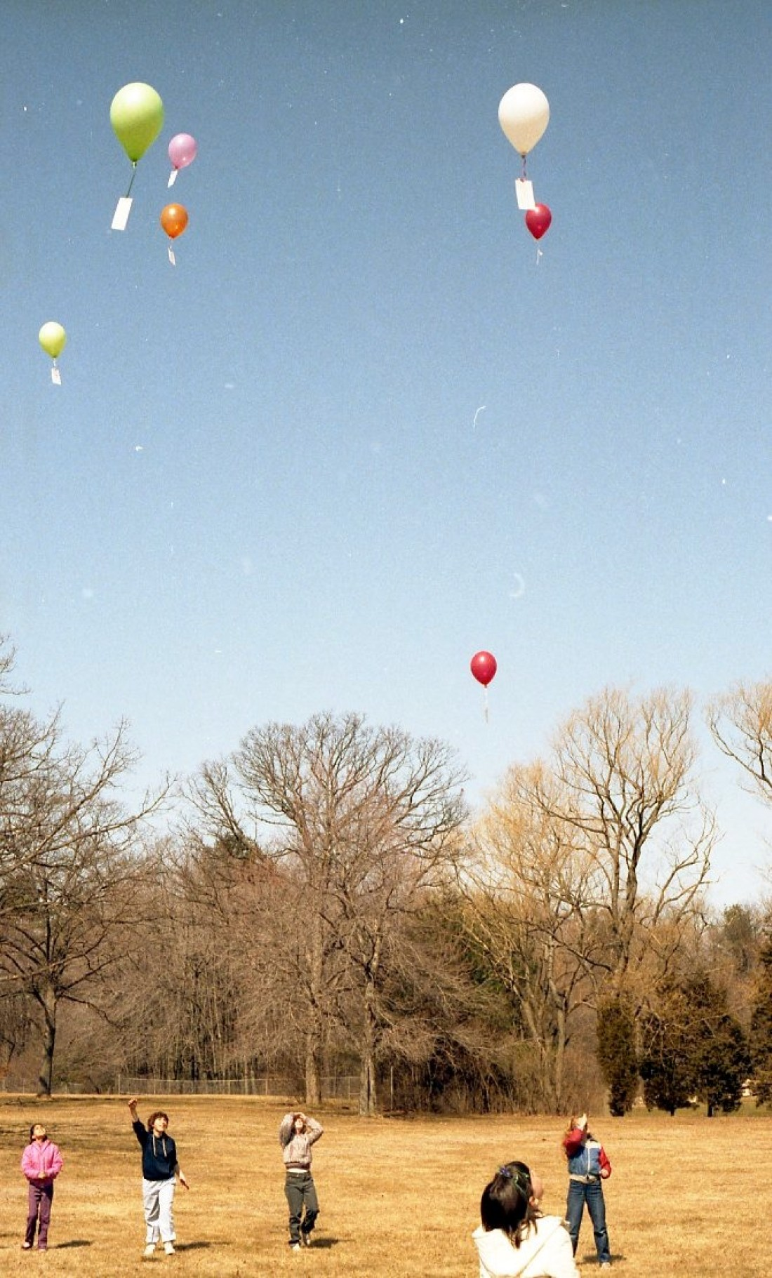 1983: Students Release Balloons with Messages • Jennifer Chronicles